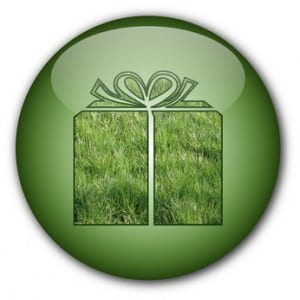 """Eco-gift"" button"