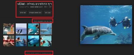 דוגמה לתמונות בגוגל