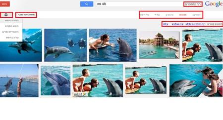 תצוגה של גוגל תמונות