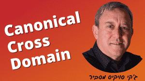 מה זה Canonical cross domain
